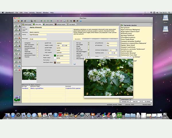 Plant Base on Mac OSX